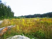 Земельные участки недорого Киев и область